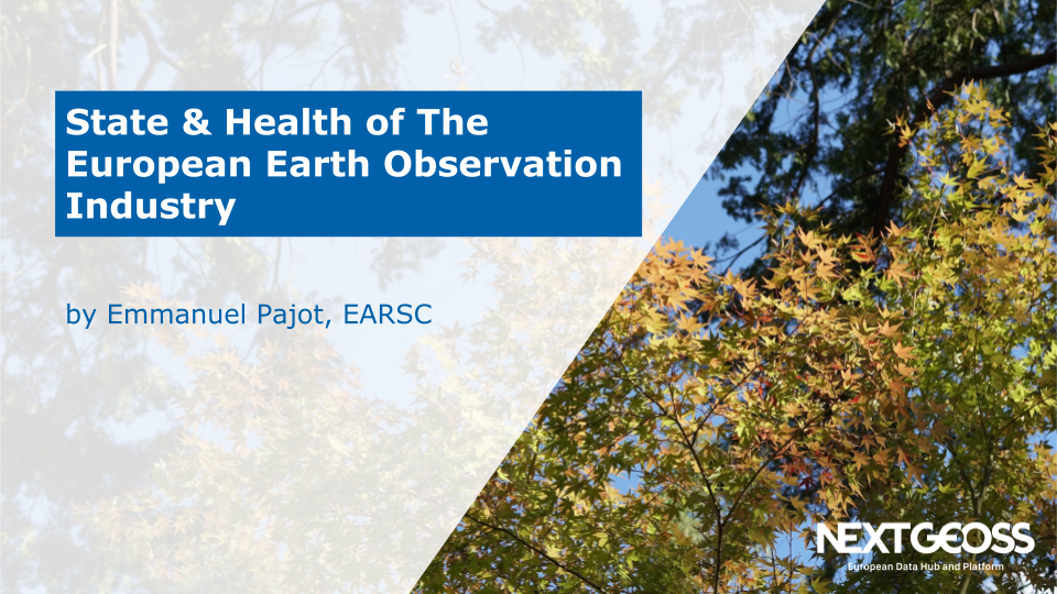 Earth observation industry 2019