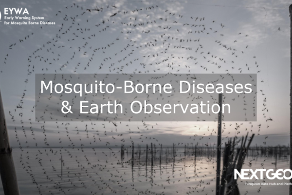 Mosquito-borne diseases and Earth observation